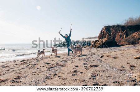 man walking with siberian huskies and labrador dog on beach - stock photo