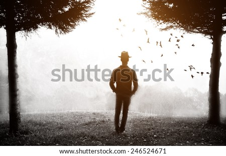 man watching landscape in the fog - stock photo