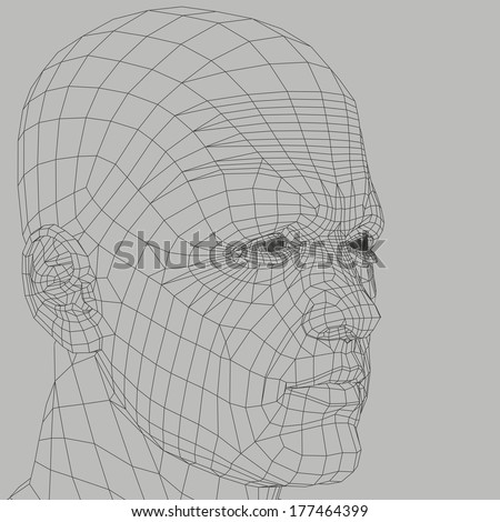 Man wireframe 3d illustration. Head and face human figure abstract outline. - stock photo