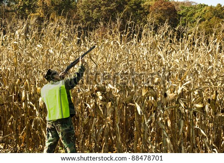 man with a safety vest hunting along the edge of a cornfield