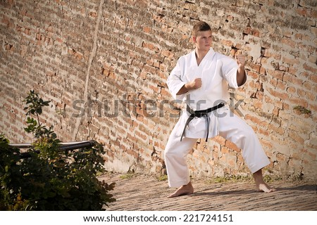 Man with black belt in karate stance in front of a brick wall - stock photo