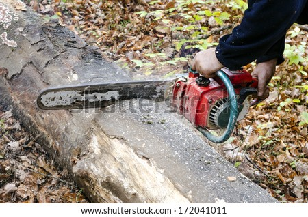 Man with chainsaw cutting a tree into smaller logs. - stock photo