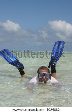 Man with fins and mask - stock photo