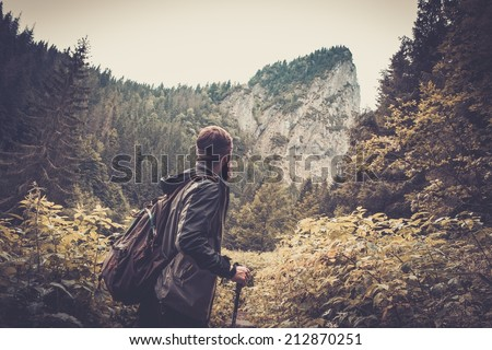 Man with hiking equipment walking in mouton forest - stock photo