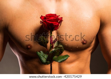 Man with muscular torso holding rose - studio shot