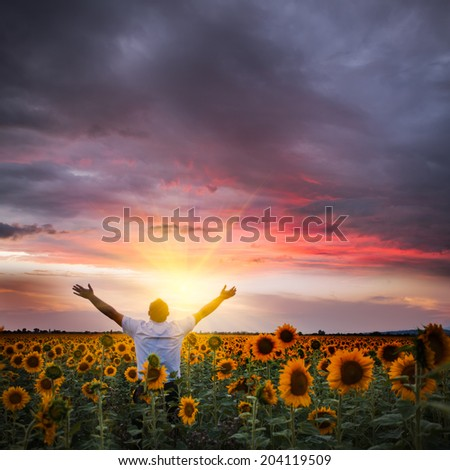 Man with raised hands enjoys with beauty world - stock photo