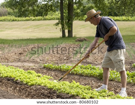 man working in his garden with a hoe - stock photo
