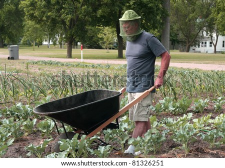 man working in his garden with a wheelbarrow - stock photo