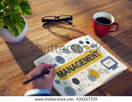 Management Organization Strategy Process Controlling Concept - stock photo