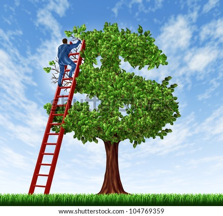 Managing your money and debt management with a business man on a ladder taking care of a tree that is shaped as a dollar symbol as a  financial concept of wealth growth and economic advice. - stock photo