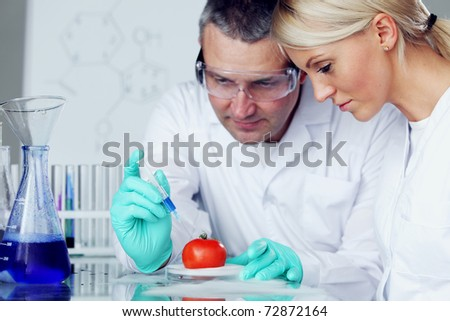 manand woman try to change tomato DNA - stock photo