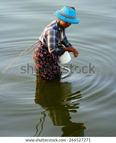 MANDALAY, MYANMAR - NOVEMBER 8: A local Burmese lady fishing in Taungthaman Lake below the U Bein Bridge, the longest wooden bridge in the world near Mandalay, Myanmar on the 8th November 2012. - stock photo