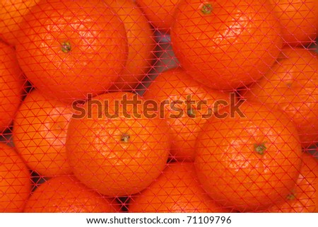 Mandarin oranges - stock photo