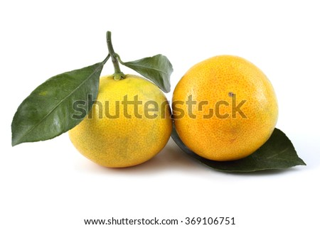 Mandarin oranges and leaves
