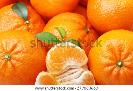Mandarin tangerine citrus fruit background. - stock photo