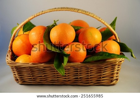 mandarins   in the  basket