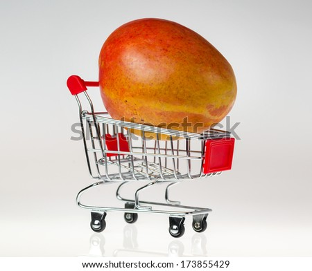 Mango placed in a small shopping cart on a white reflective background. - stock photo