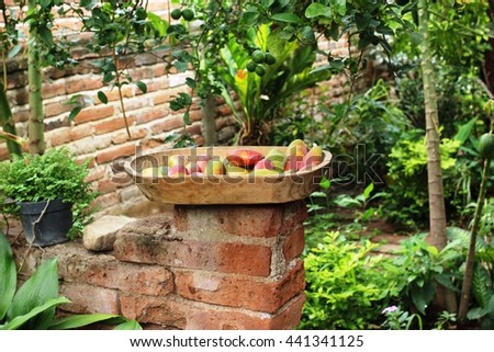 Mangoes in a wooden basket in a tropical warm place