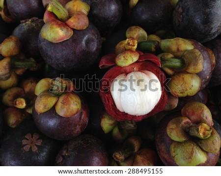 mangosteen at thai fruit - stock photo