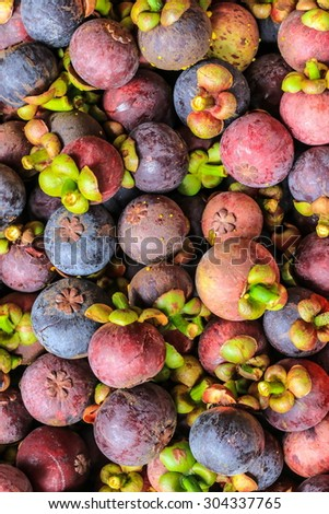 Mangosteen of Thailand - stock photo