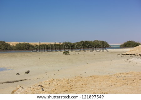 Mangrove Bay in Ras Mohamed National Park, Egypt. - stock photo