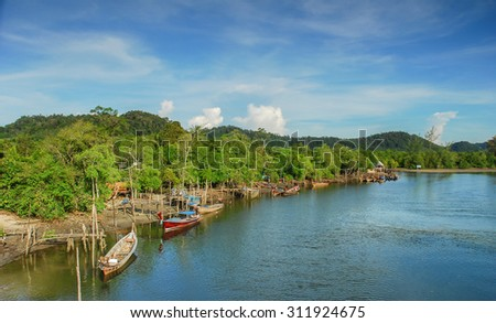 Mangrove forest, Beautiful blue sky and tropical mangrove forest at Krabi,Thailand. Intertidal forest. important for ecology coast and co-operation community. Background - stock photo
