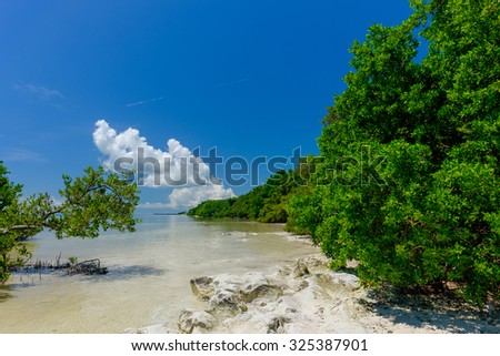 Mangrove Island along the clear and shallow waters of the Florida Keys with some amazing cloud formations - stock photo
