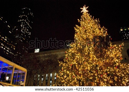 MANHATTAN - DECEMBER 4: A Nighttime view of the Bryant Park Christmas tree after being lit on December 4, 2009 in New York City. - stock photo