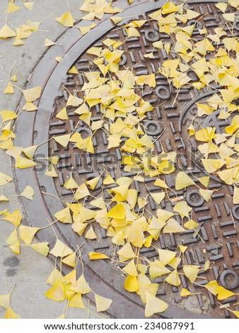 manhole - stock photo