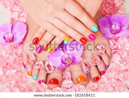 Manicure and pedicure. Nail polish and Accessories. Colorful Studio Shot of Stylish Woman. Vivid Colors. Rainbow Colors  - stock photo