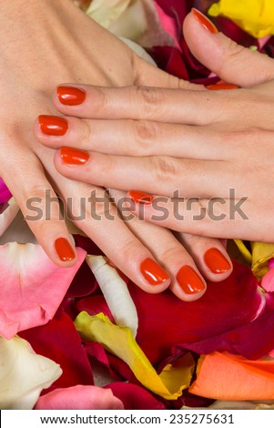 Manicure - Beautiful manicured woman's hands with red nail polish on rose petals.Beautiful hands with a nice manicure. Gel nails are covered with red polish. Spa treatment for hands.