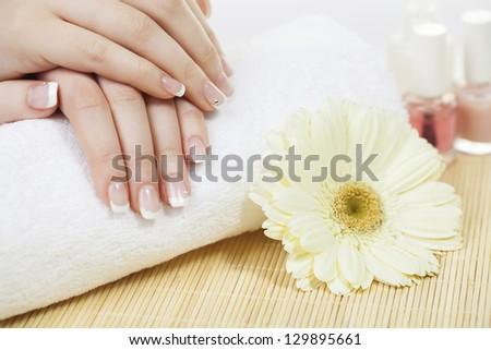 Manicure - Beauty treatment photo of nice manicured woman fingernails. Selective focus. - stock photo