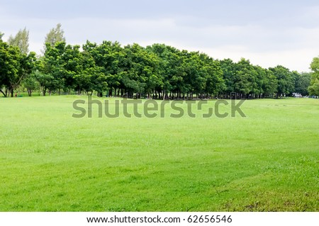 Manicured lawns - stock photo