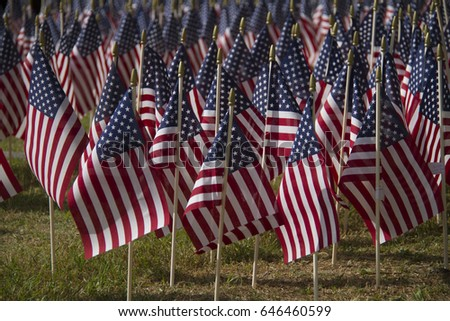Many American flags on display in the filed for Memorial Day or July fourth.