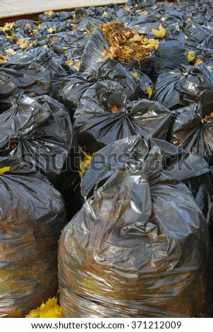 Many black garbage bags filled-in by autumn - stock photo