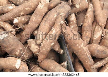 Many cassavas for sell in the market, Closeup detail - stock photo