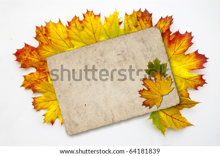 Many colorful autumn leaves with a paper - stock photo