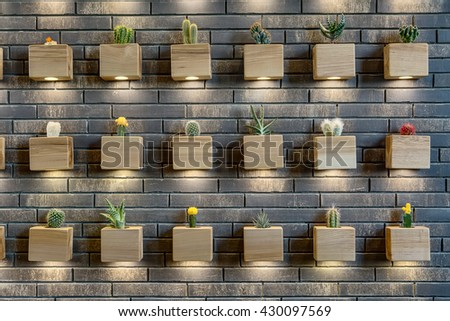 Many different cactuses in the light-wooden pots with backlight on the brick wall. Horizontal. - stock photo