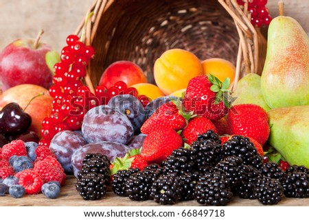 Many different European Fruits in Summer Season - stock photo