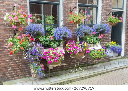 Many flowering pottery plants hanging at facade of house in street. The various colorful flowers are outstanding. in the wall there are some windows and a door.