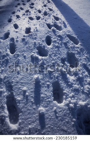 many footprints in the snow - stock photo