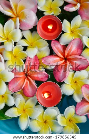 Many frangipani flowers with red candle in the blue water