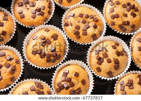 Many fresh and tasty home baked chocolate muffins - stock photo