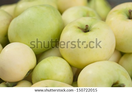 "Many fresh apples ""Early Gold"", close-up"