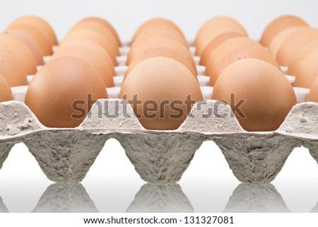 Many fresh brown eggs in carton tray - stock photo