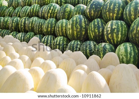 Many green and yellow melons on a market