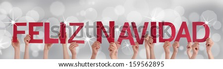 Many Hands Holding the Spanish Words Feliz Navidad Which Means Merry Christmas on a Silver Background - stock photo