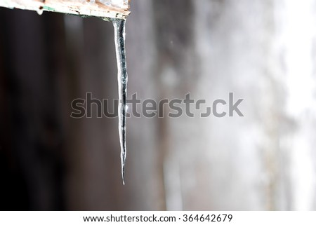 Many little icicles on the edge of cottage roof.