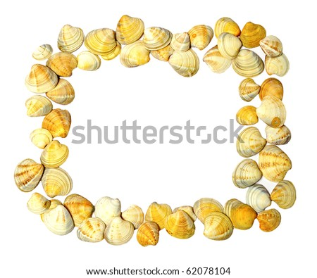 Many little shells isolated as frame - stock photo