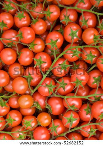 Many little tomatoes